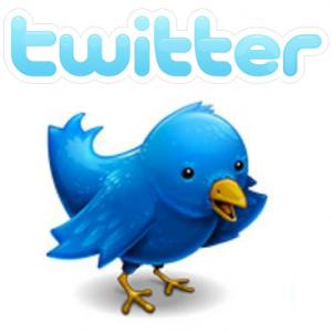 Twitter ergo sum