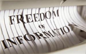 L'Europa approva la relazione Media freedom