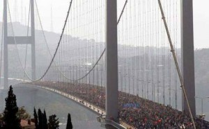 Turchia: vietato difendere gli alberi