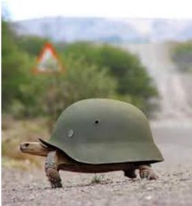 A' la guerre comme à la guerre (I Tg di giovedì 15 maggio)