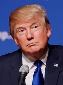 Donald Trump, chi lo voterebbe, uno così?