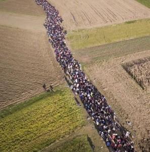 Di nuovo il connubio profughi-terroristi? (I Tg di mercoledì 2 marzo)