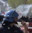 Bonifica e proteste (I Tg di mercoledì 6 aprile)