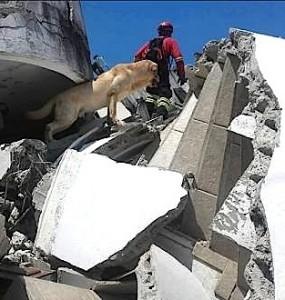 Terremoto in Ecuador, gli ultimi aggiornamenti