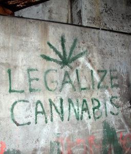 """Favorevole alla legalizzazione """"condizionata"""" delle droghe leggere"""