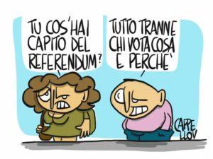 Referendum e confusione