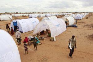 """""""Dadaab, dove muoiono i sogni dei somali"""". 22 ottobre, tg3, il reportage di Enzo Nucci"""