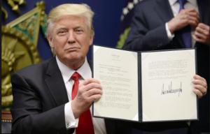 America, culla della libertà e del diritto