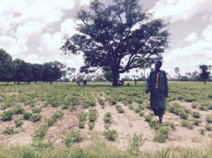 Aiutati noi a casa loro. Epilogo (Diario dal Senegal – 6° giorno)