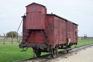 Auschwitz-Birkenau. La vergogna dell'umanità