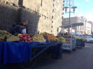 Diario dal Kurdistan. 10 giorni di lavoro con gli attori