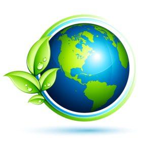 Conversione ecologica?