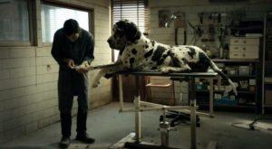 I resti umani di Dogman