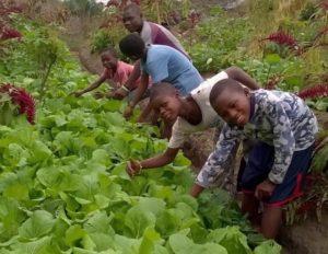 Congo. Casa Marisa: l'orfanotrofio dove si coltiva il futuro