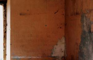 Codici arcaici e droga, la ndrangheta da Roma alla Calabria