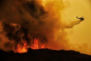 Criminali incendiari. Nessun piromane in Sicilia
